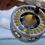 best-fly-reel-for-saltwater-fishing