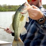 best size fishing line bass fishing