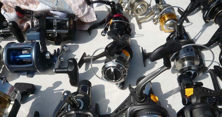 many different types of fishing reels
