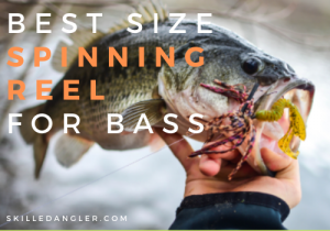 best size spinning reel for bass fishing