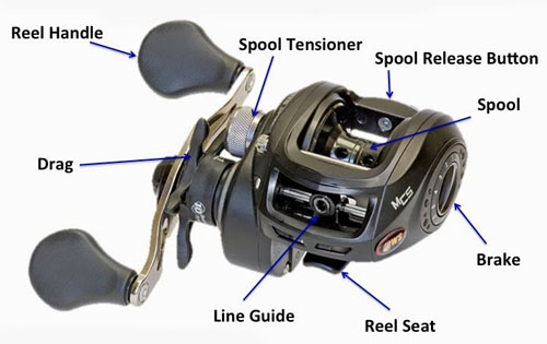 baitcasting reel diagram