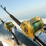 freshwater reels vs saltwater reels