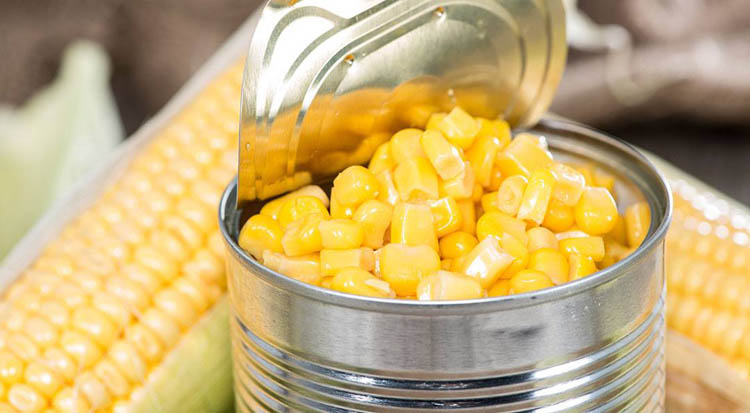 fishing with canned corn