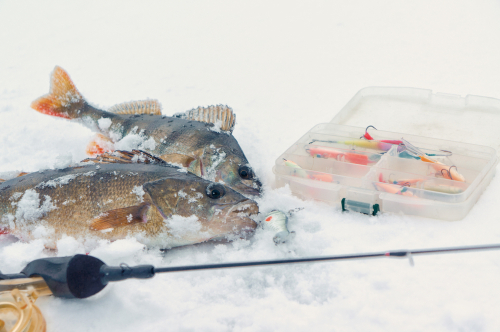 how deadstick ice fishing works
