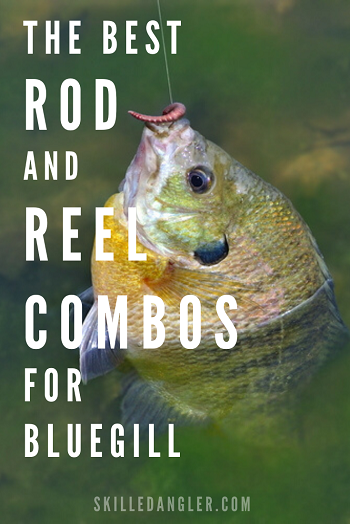 best bluegill fishing rod and reel combo